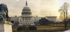 U.S. Treasury belatedly reveals 'regulatory reform' talks with EU